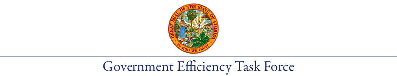 Government Efficiency Task Force with State of Florida Seal
